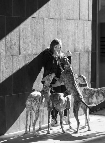 Rosa Alvarez, Tierschuetzerin